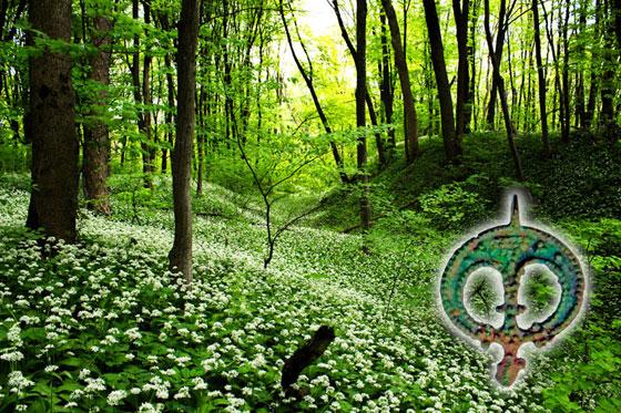 Вали Звенигороду, язичницький амулет-лунниця та квітнуча ведмежа цибуля