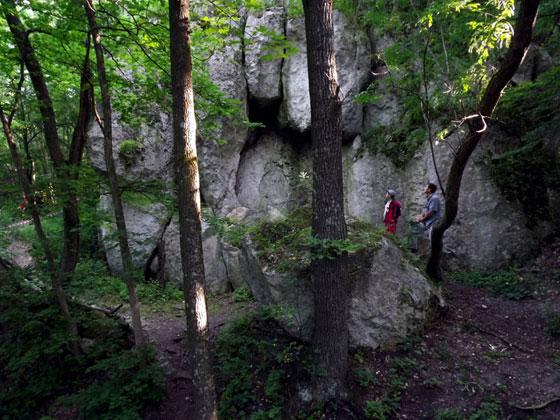 Скелі Звенигороду