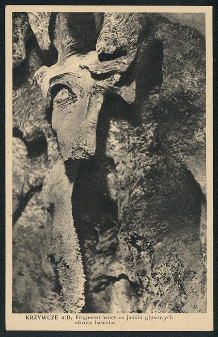 Зал буйвола у «Кришталевій». Світлина невідомого автора з часів перед Другою світовою війною