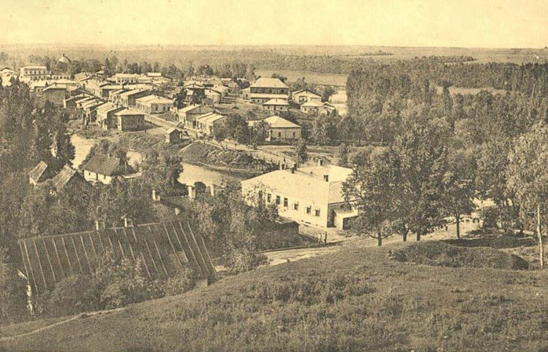 Микулинці на початку ХХ ст. На горі видно палац.