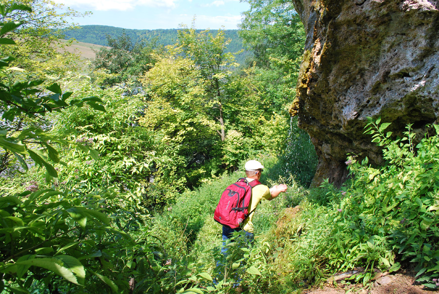 Водоспад на травертиновій скелі спадає у напрямку Дністра просто з-над давньої пам'ятки. Вода прозора і смачна
