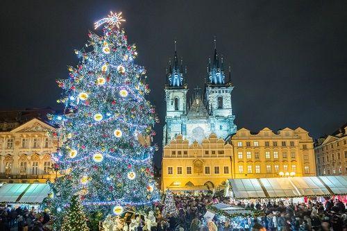 Експерти визначили найкращі різдвяні ялинки Європи - фото 62831